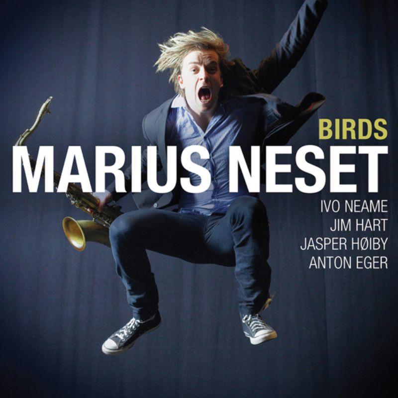 Marius_Neset__Birds