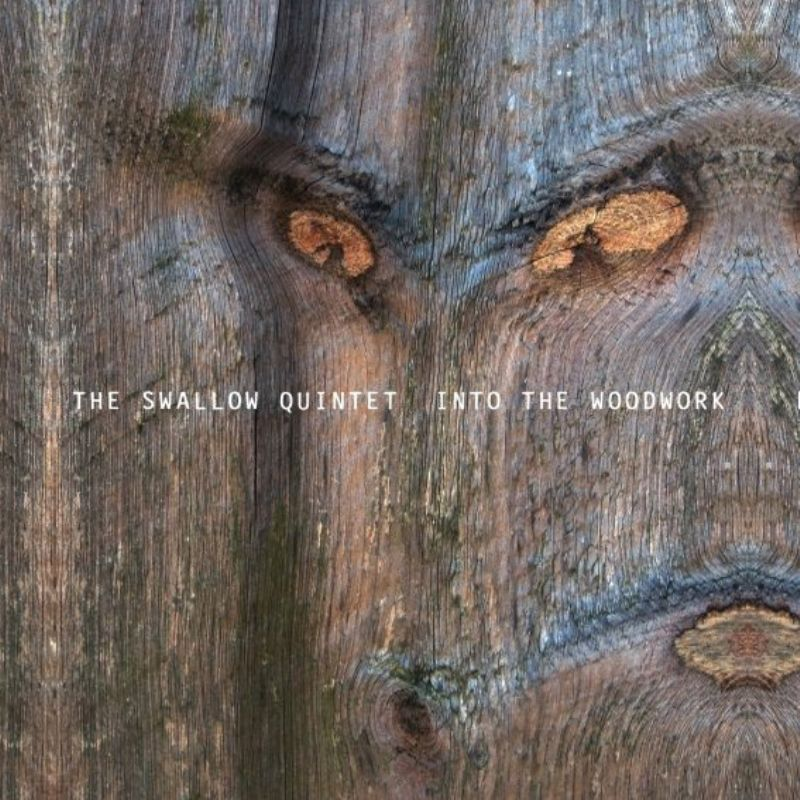 The_Swallow_Quintet__Into_the_Woodwork