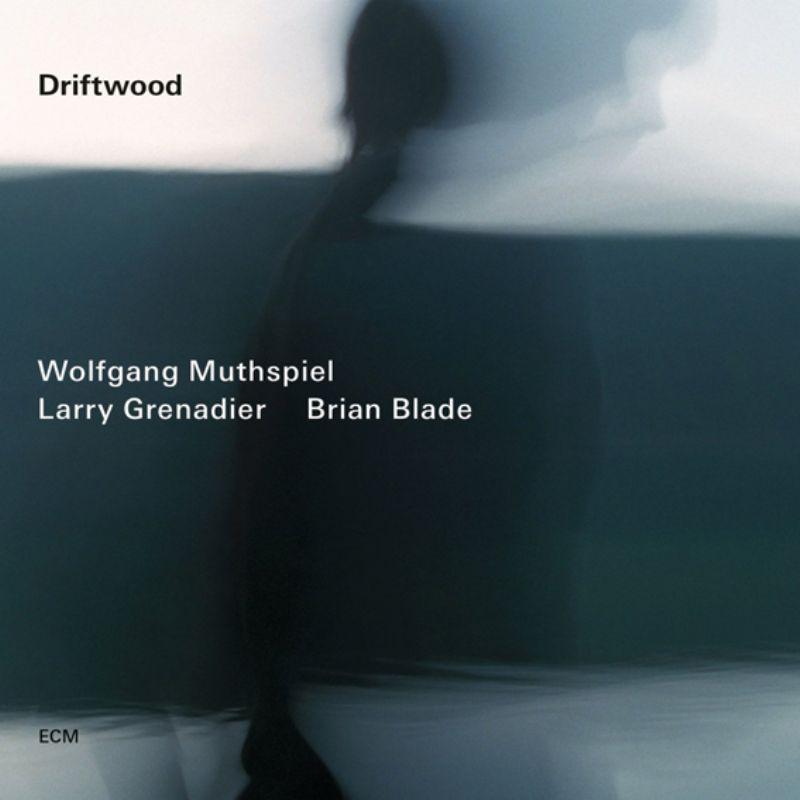 Wolfgang_Muthspiel_Larry_Grenadier_Brian_Blade__Dr