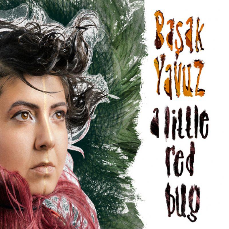 Basak_Yavuz__A_Little_Red_Bug
