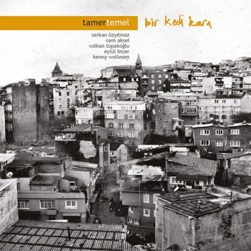 Tamer_Temel__Bir_Kedi_Kara